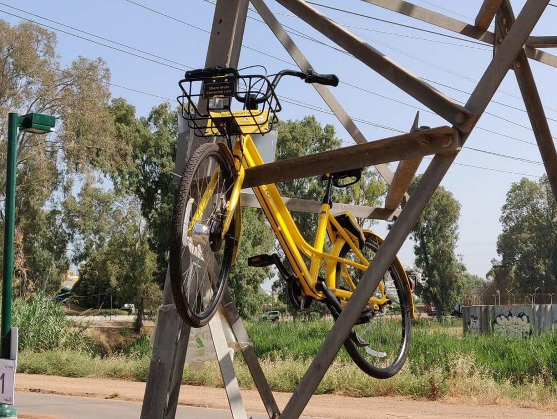 אופניים בפארק - צילום צחי הופמן